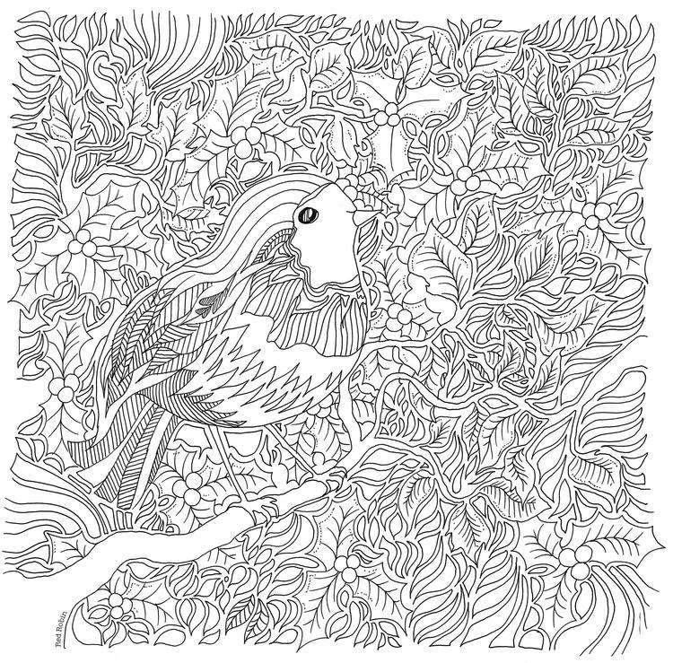 Bird Enchanted Forest Coloring Book