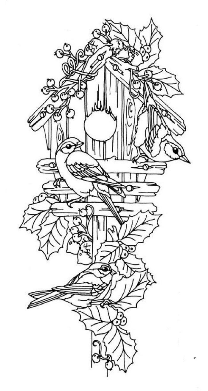 Birds and birdhouse coloring pages