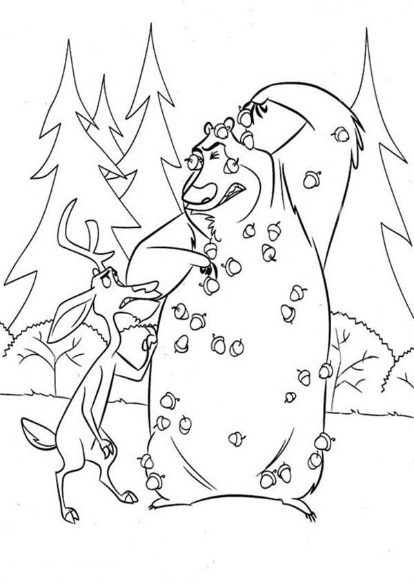 Boog Being Pelted With Pine Fruit In Open Season Coloring Pages