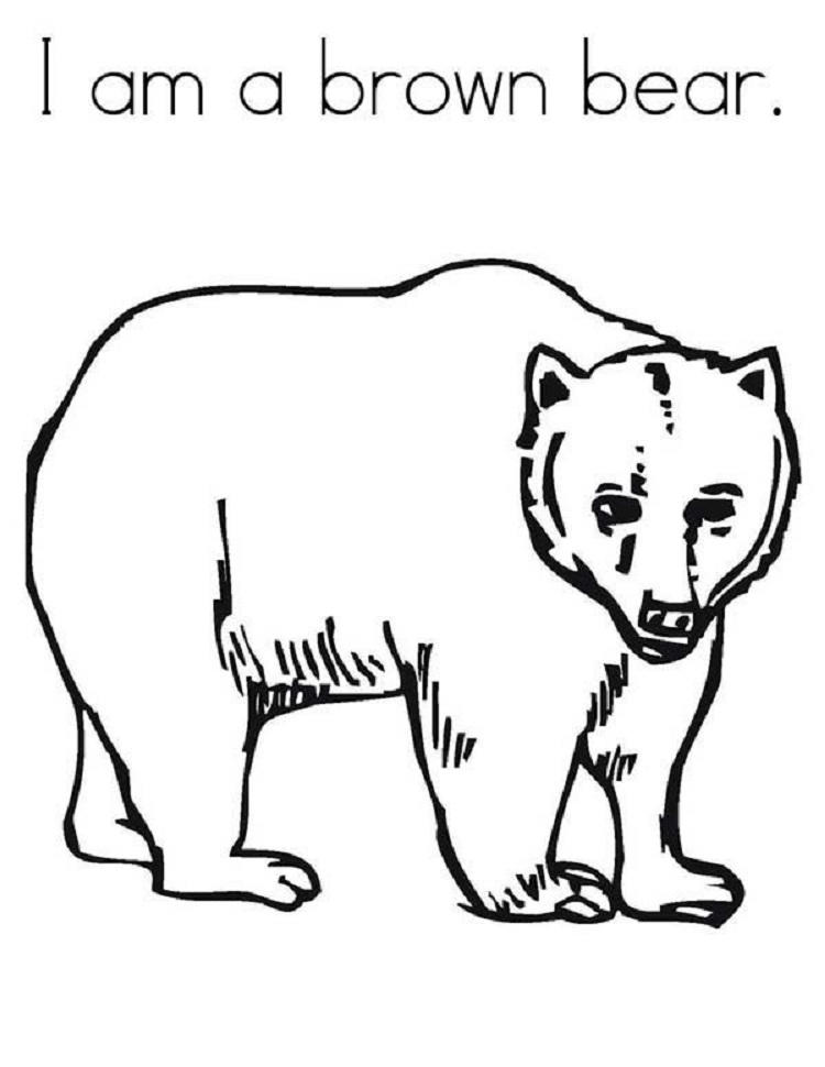Brown Bear Coloring Pages Printable