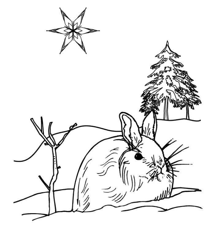 Bunny winter animal coloring page