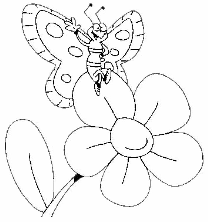 Butterfly And Big Flower Coloring Page For Kindegarten