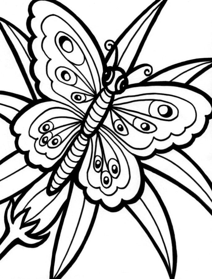 Butterfly Flower Coloring Pages Cute