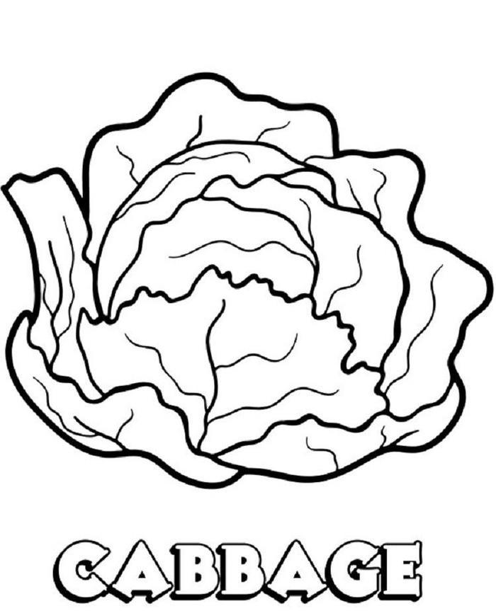 Cabbage Vegetables Coloring Pages