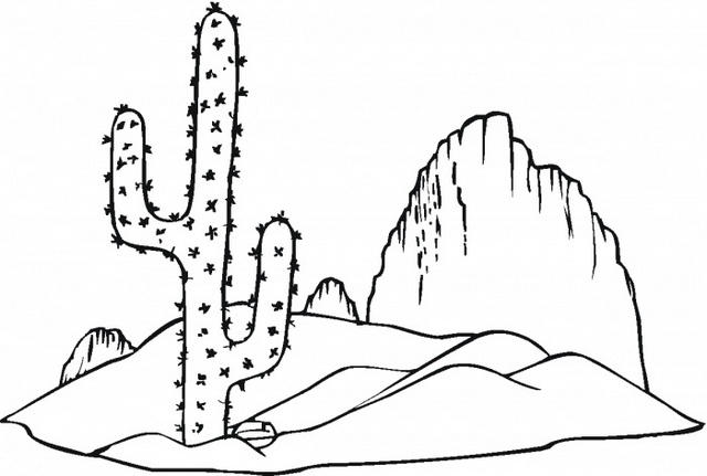 Cactus Growing In Desert Coloring Pages