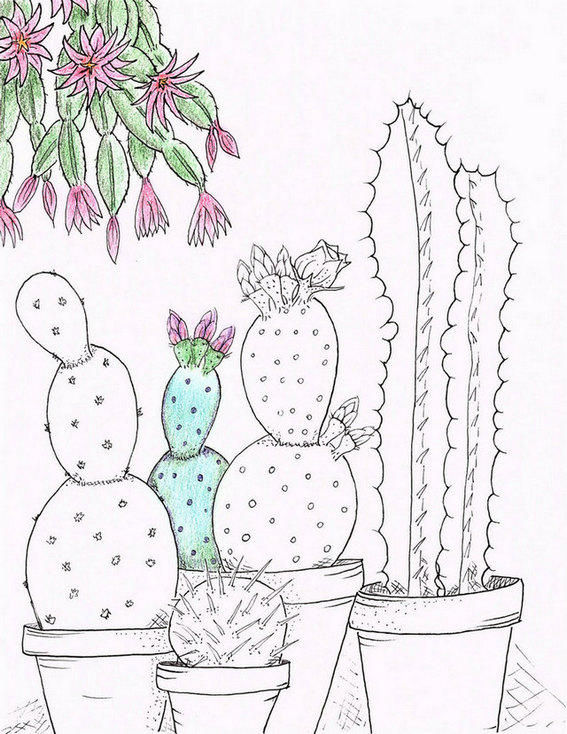 Cactus In The Garden Coloring Page For Boys And Girls