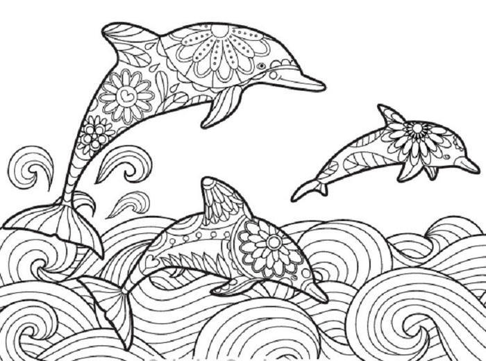 Calm Dolphin Coloring Pages