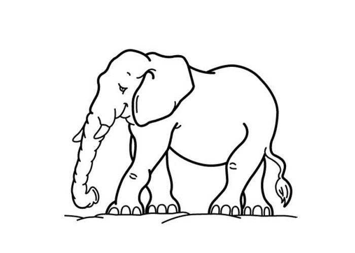 Cartoon Elephant Coloring Pages Cartoon Coloring Pages