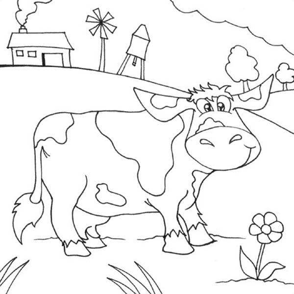 Cartoon Of Farm Life Coloring Pages
