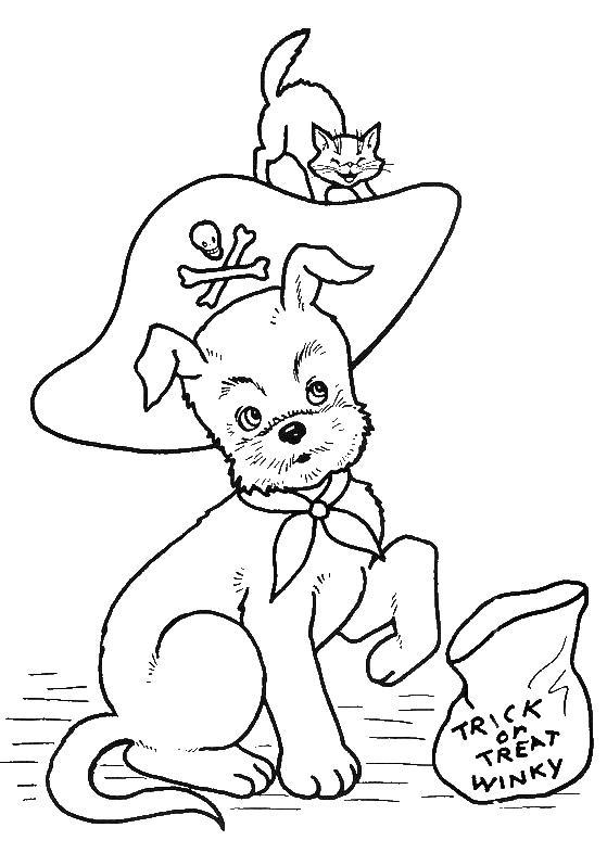 Cat And Dog Halloween Coloring Pages