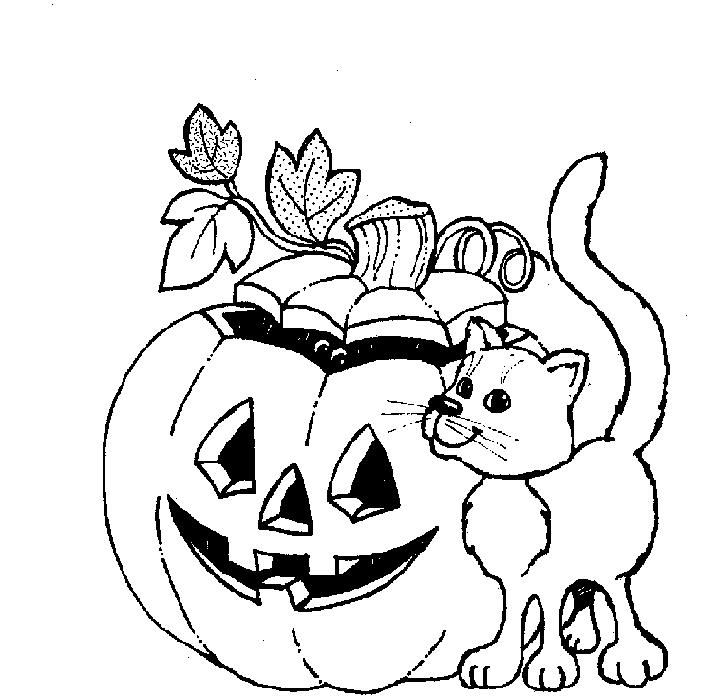 Cat And Halloween Pumpkin Coloring In Pages
