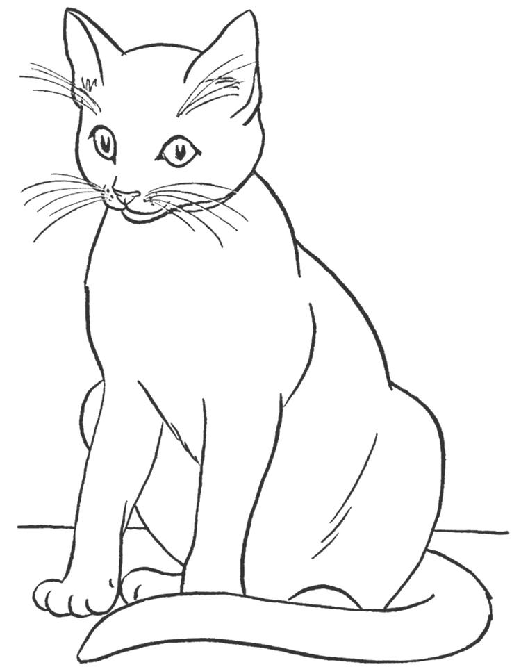 Cat Coloring Pages 04