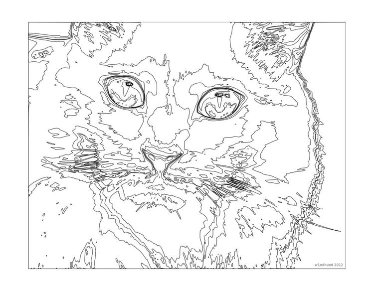 Cat Coloring Pages For Teenagers Difficult Color By Number