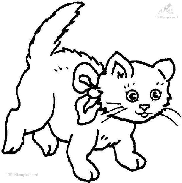 Cat Coloring Pages To Print Out