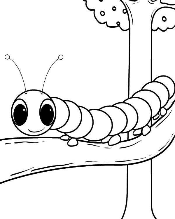Caterpillar Coloring Pages On Tree