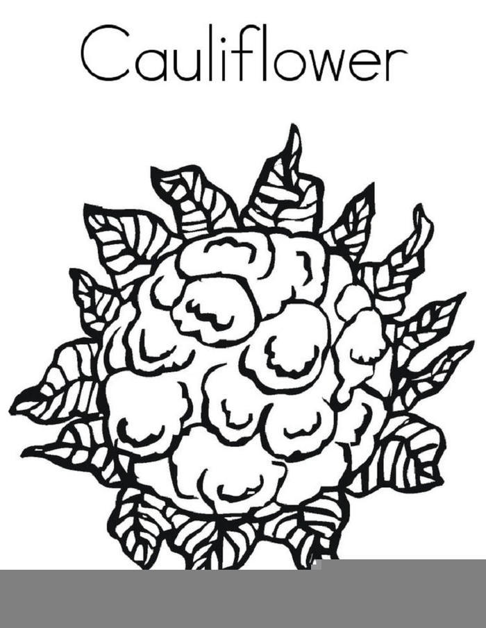 Cauliflower Vegetables Coloring Pages