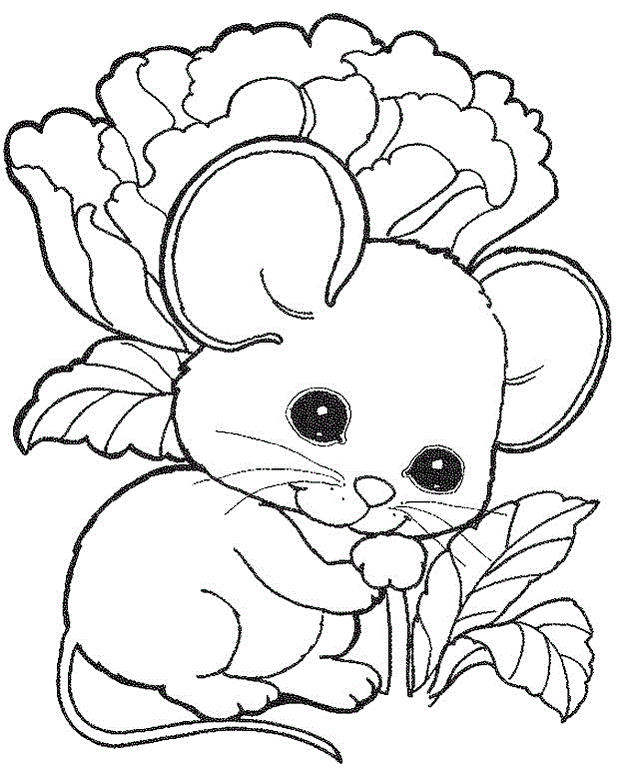 Charming Mouse Coloring Picture