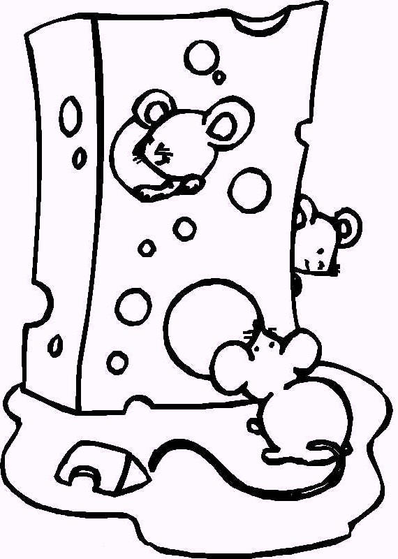 Cheese Coloring Page For Kids