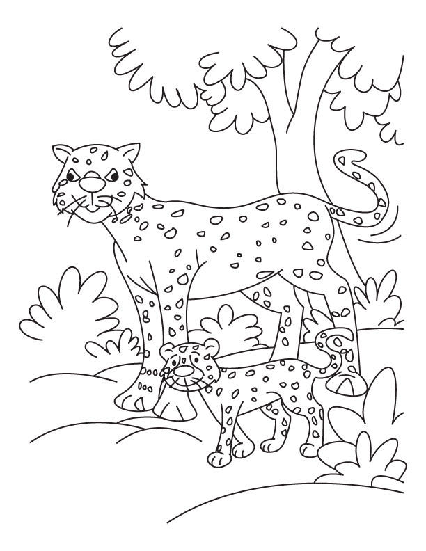 Cheetah Coloring Pages For Kindergarten