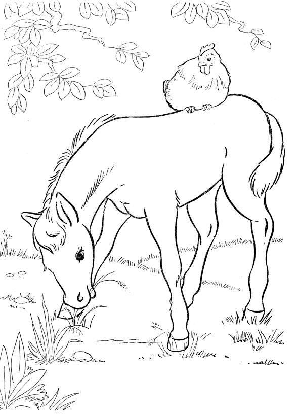Chick And Baby Horse Coloring Pages