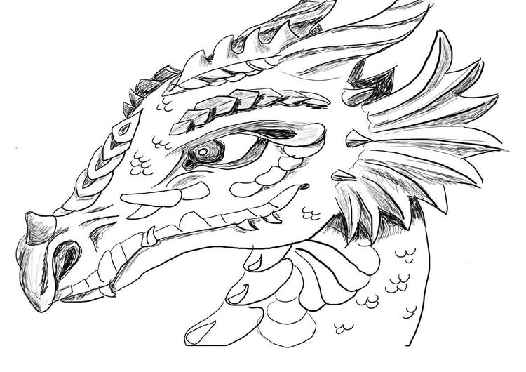 Chinese Dragon Head Coloring Pages 1