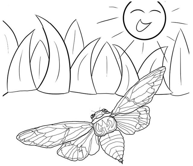 Cicada Flying Coloring Page