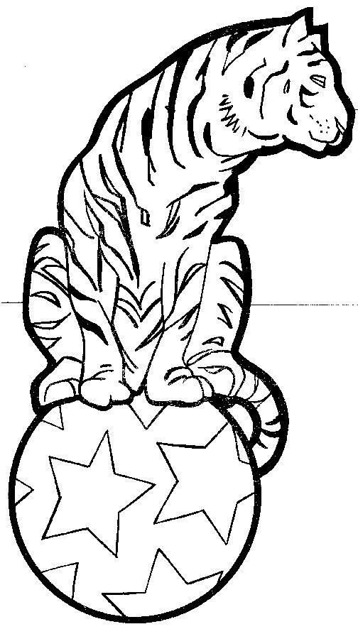 Circus Coloring Pages Tiger