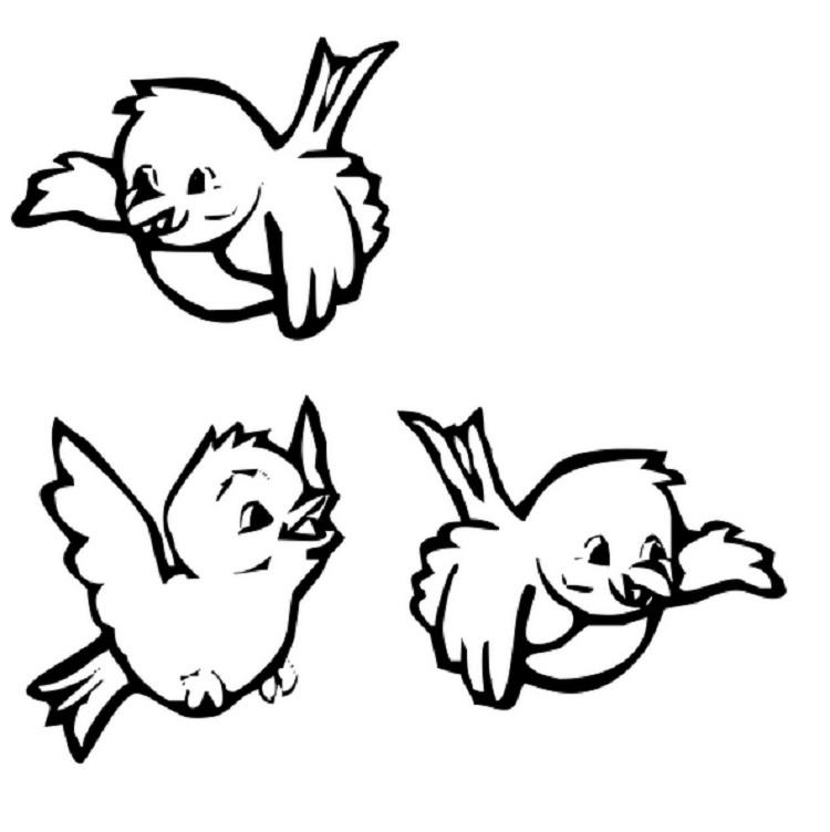 Coloring Page Of A Bird Flying