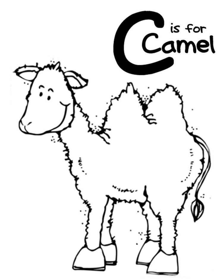Coloring Pages Alphabet C Is For Camel