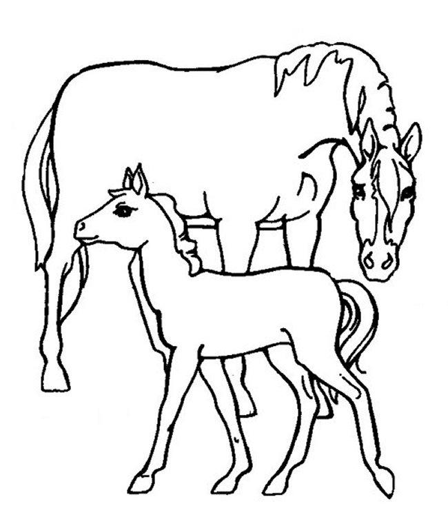 Coloring Pages For Girls Horses