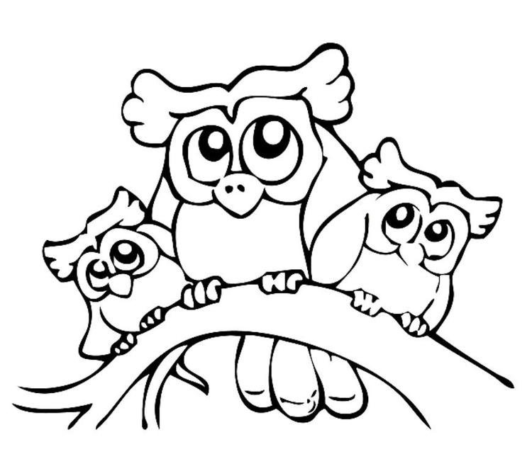 Coloring Pages Of Owl Babies