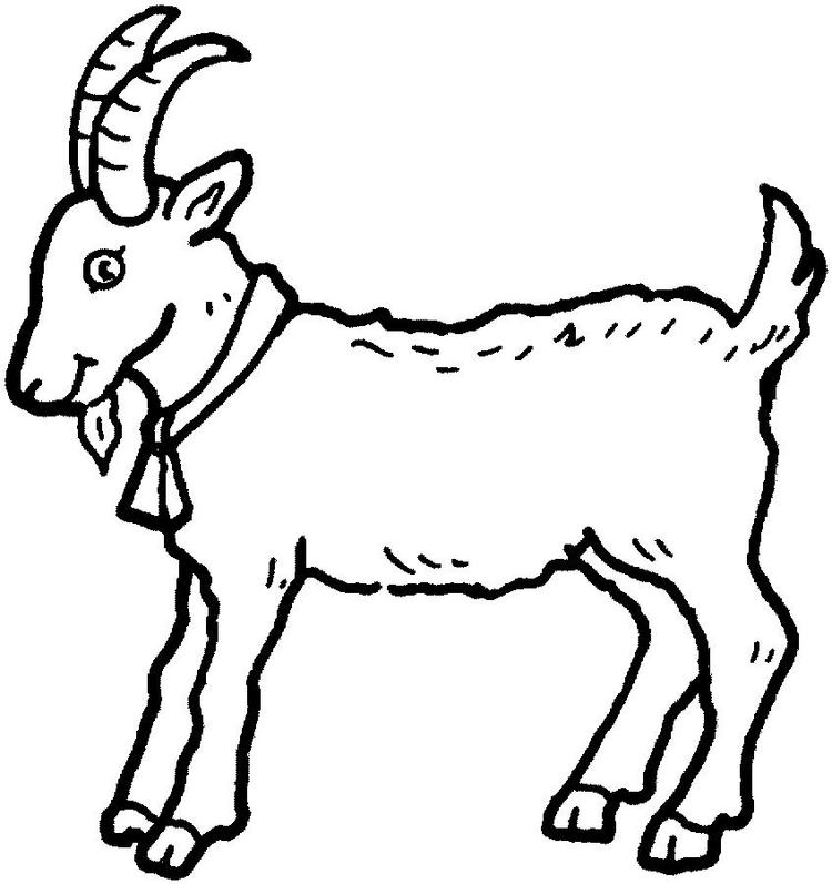 Coloring Pages Printable Animals