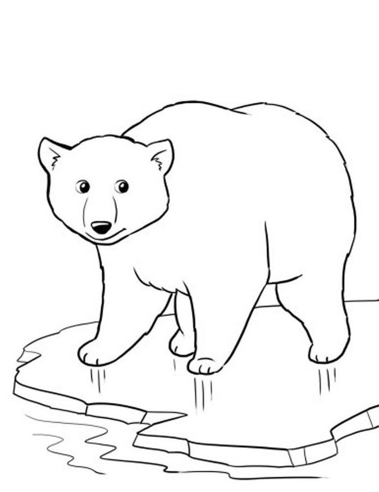 Coloring Pages Winter Polar Bear