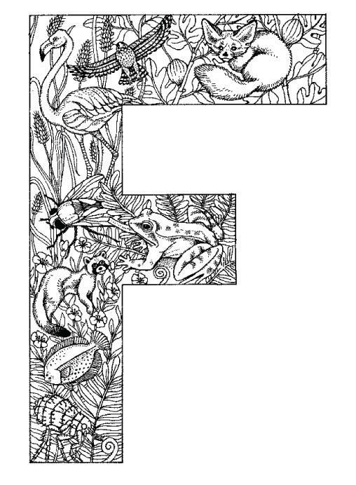 Coloring Pages Animal Plant Abc Alphabet F
