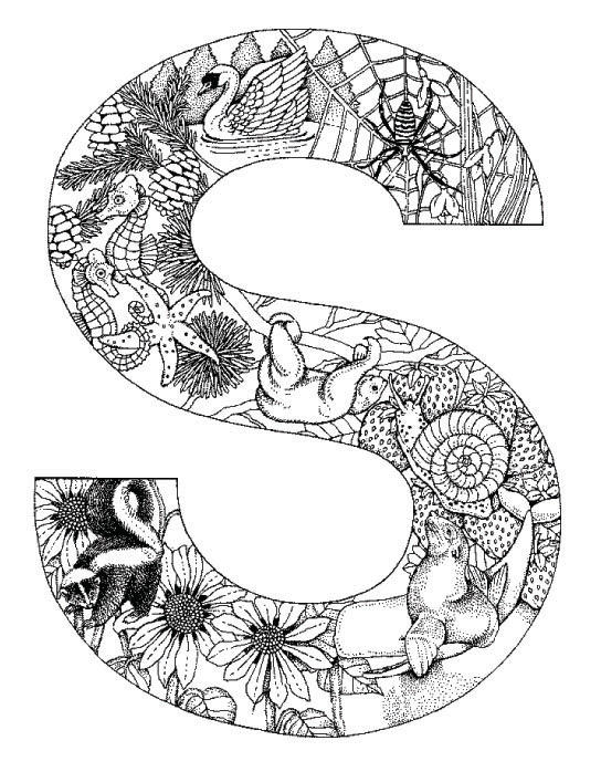 Coloring Pages Animal Plant Abc Alphabet S