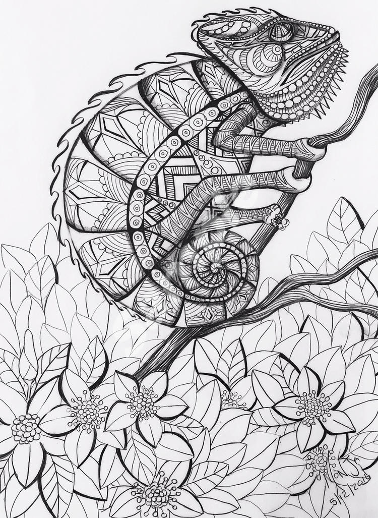 Colour My Dreams Coloring Book Chameleon