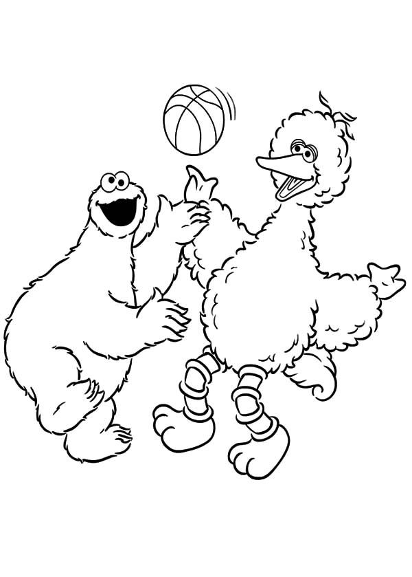 Cookie Monster Coloring Pages And Big Bird