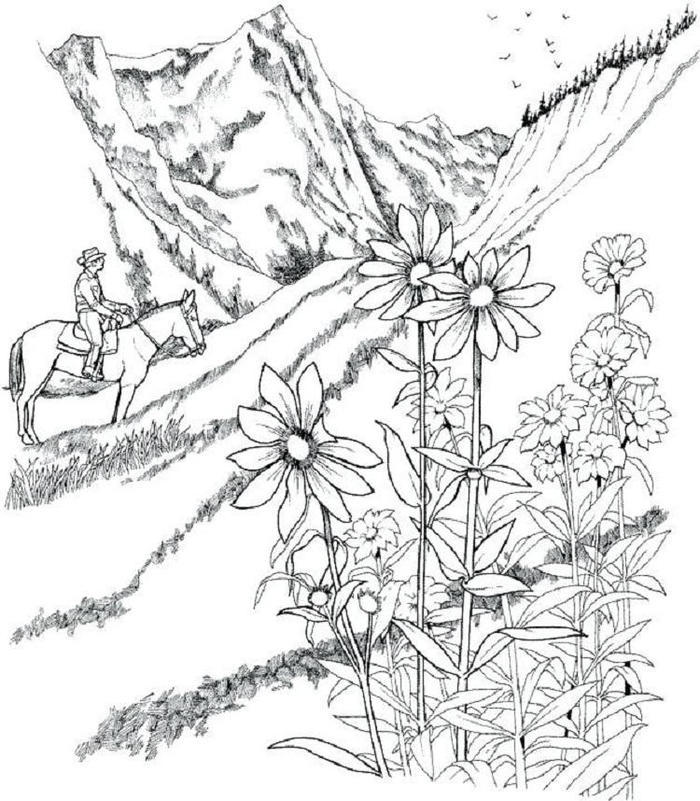 Countryside Landscape Coloring Pages