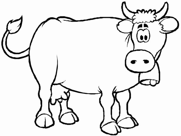Cow Coloring Pages Printable Animals