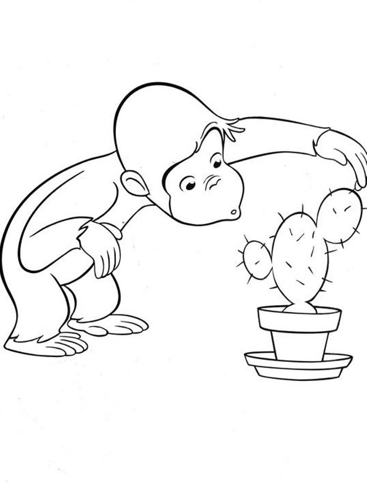 Curious George Coloring Pages Touching Cactus