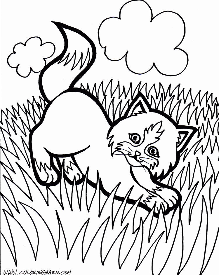 Cute Baby Kitty Coloring Pages