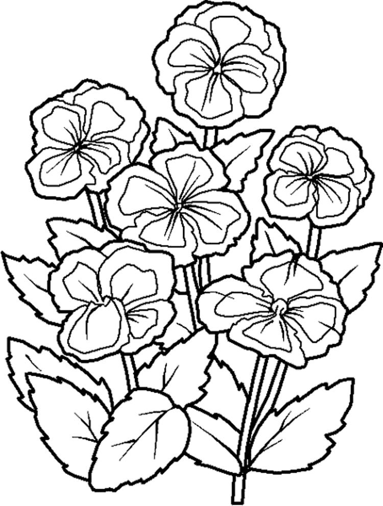 Cute Floral Coloring Pages To Print