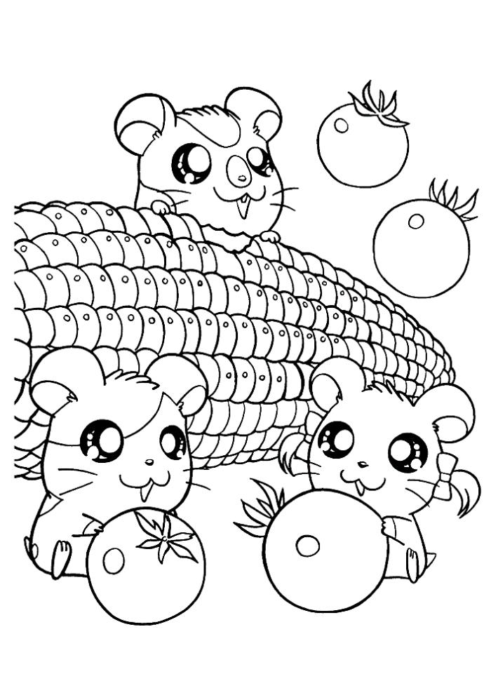 Cute Little Hamster Coloring Pages