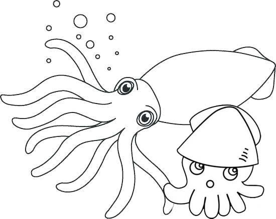 Cute Squid And Baby Coloring Pages