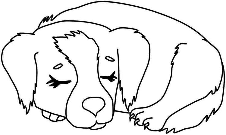 Cute Toddler Animal Coloring Pages 2