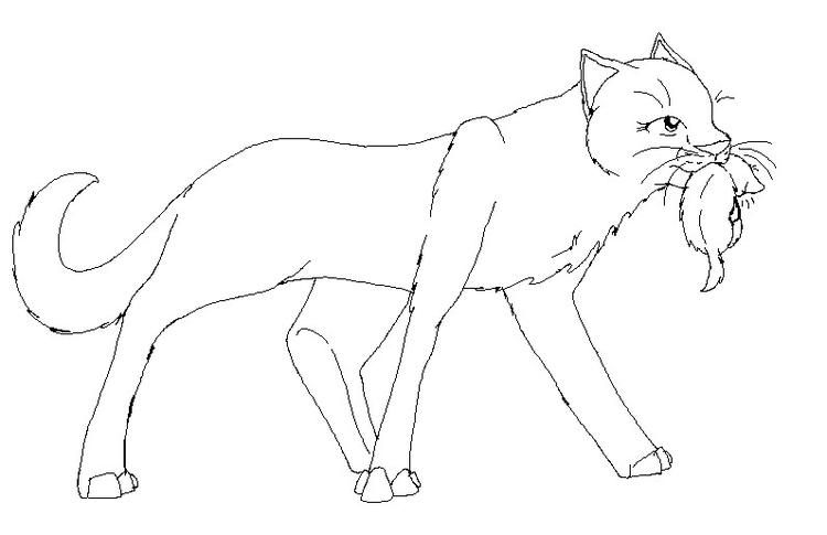 Cute Warrior Cat Coloring Pages 1