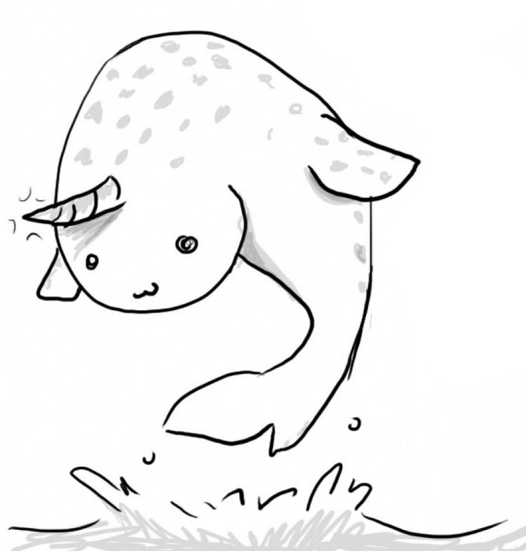 Cute Narwhal Cartoon Drawing Page Activity