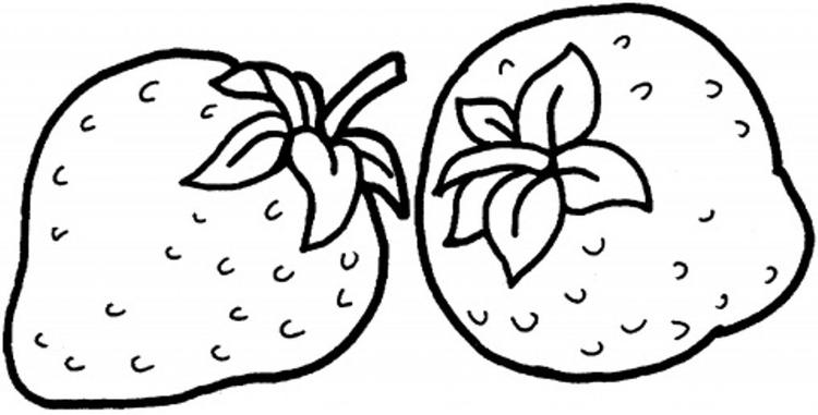 Delicious Strawberry Fruit Coloring Pages