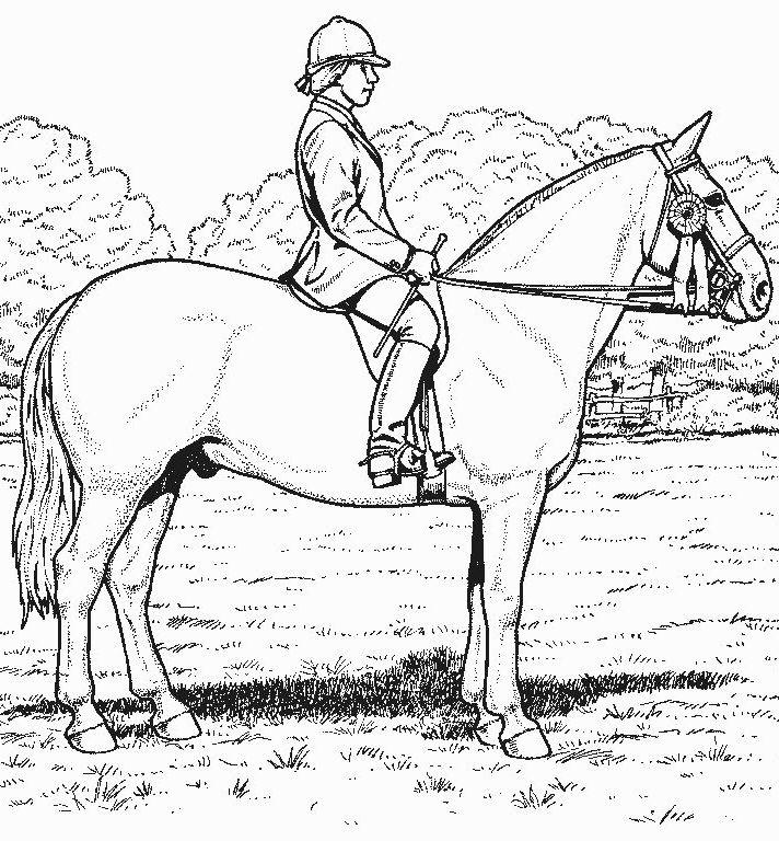 Derby Horse Coloring Pages