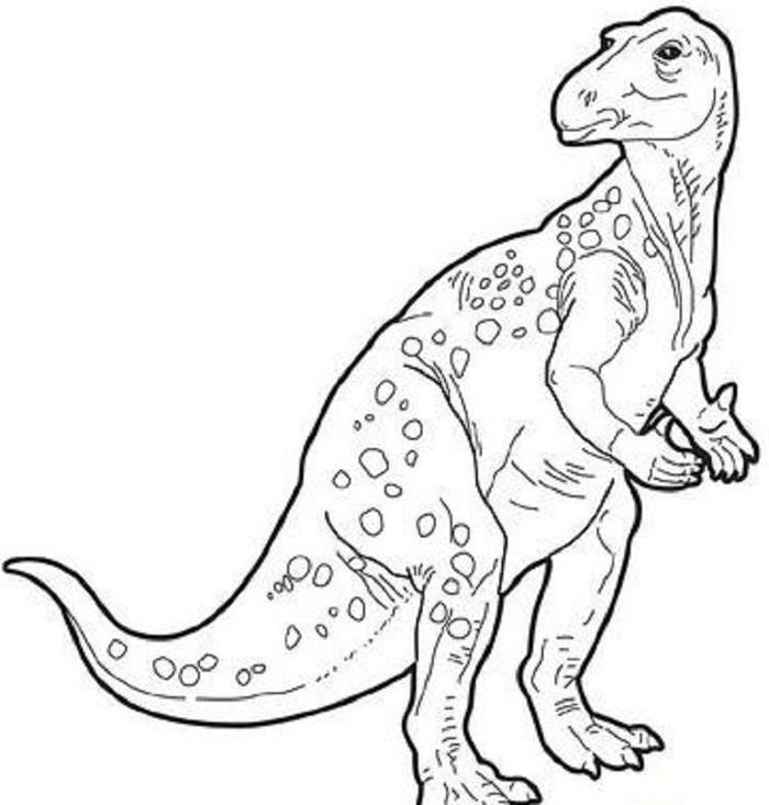 Dinosaur coloring pages iguanodon